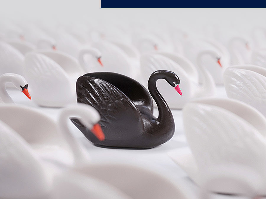 Year in Review: 2020 – The Year of the Black Swan Event